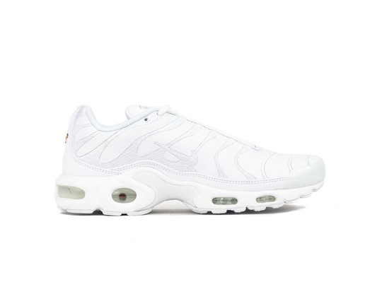 NIKE AIR MAX PLUS-AJ2029-100-img-1